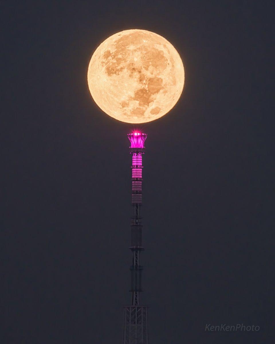 スカイツリーとお月さまが美しい。