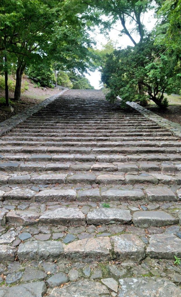 これは東大寺境内にある「そこで転ぶと猫になる」と言われているらしい猫坂(猫段)
