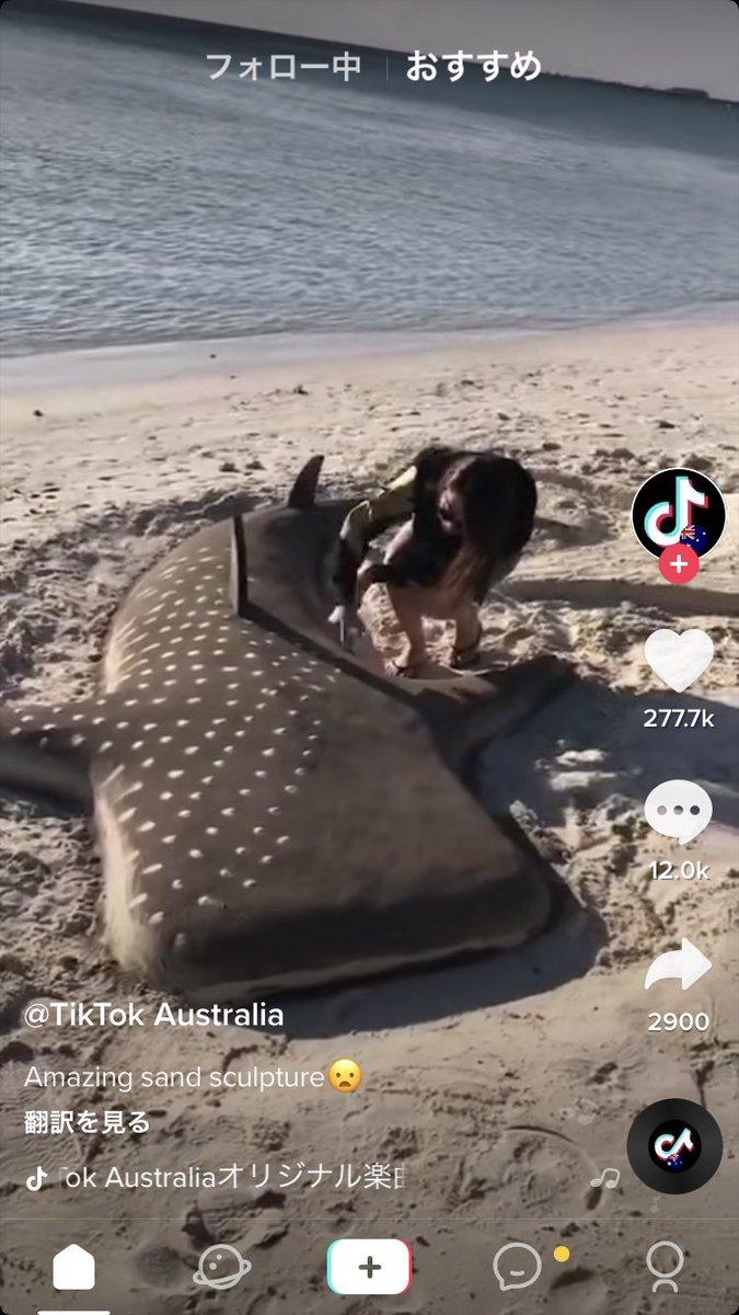 めちゃくちゃ凄いジンベイザメの砂の彫刻を作った動画のコメント欄、 「sclupture」(彫刻) の意味も知らずに本物だと勘違いして 虐待虐待 騒いでるのさすがに草