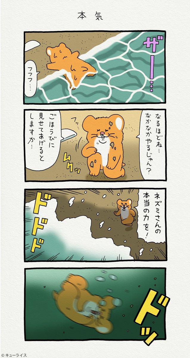 4コマ漫画スキネズミ「本気」   #スキネズミ