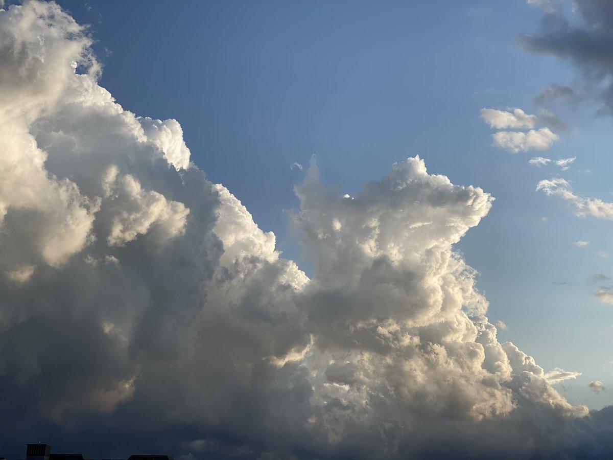 今日アップした犬っぽい雲ですが、伝わらないので説明するために線を引いたら猫も出てきました