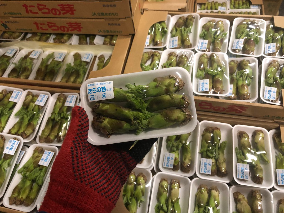 今の時期に出回るハウス栽培品は季節を先取りした商材のため、需要の大半が飲食店などの業務関係