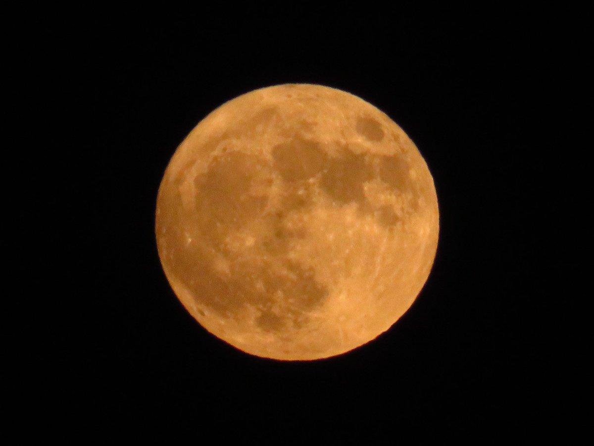 ブルームーンが夜空に昇ってきました.月が青いからというわけではなく,ひと月で2回目の満月のことをブルームーンと呼ぶことがあります.今宵の満月は10月で2回目というだけでなく,今年地球から最も遠いため,大きさも最小の満月です.ぜひ夜空を見上げてみてください🌕 #ハロウィン