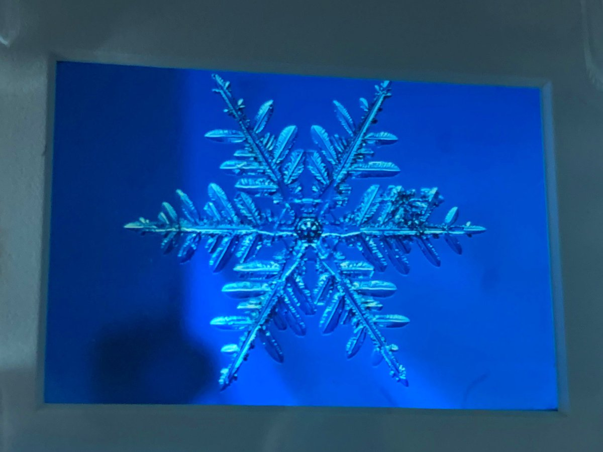 雪の美術館でこれまで展示などされなかった,本当に貴重な資料にも出会うことができました.雪の美術館のきっかけとなった北海道大学の小林禎作先生の撮影された雪の結晶のフィルムやステンドグラス,人工雪装置など,科学的に極めて重要な意味を持つ資料がめちゃくちゃ豊富でした.すごすぎる.