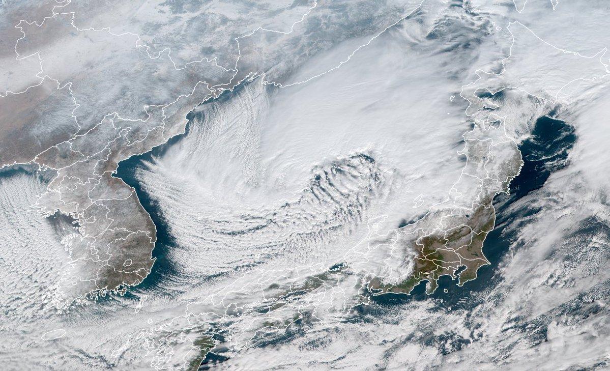 お願いです,暴風雪と大雪に本気で備えてください.低気圧に伴う渦を巻いた大きな雲域が日本海上にあります.この低気圧は急速に発達しながら北日本に進み,日本海側で嵐の前の静けさになっている地域でも次第に大荒れの天気になります.最新の気象情報を確認して,どうか安全にお過ごしください.