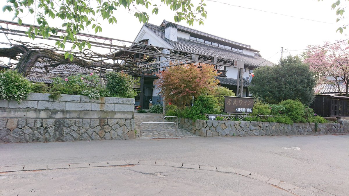 小菅村~丹波山村~柳沢峠を経由してワイナリーに有るレストランで遅めのランチ