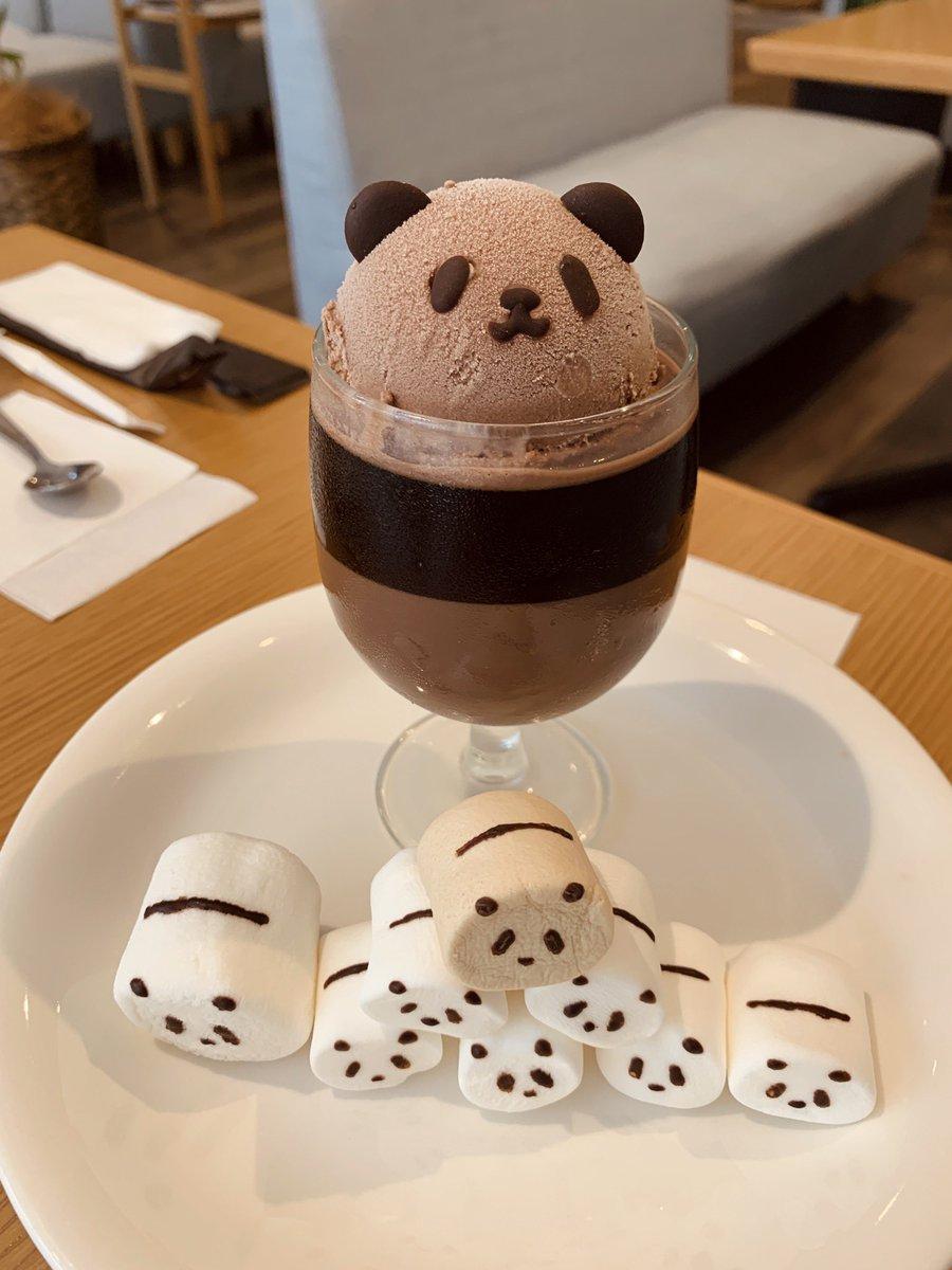 名古屋・大須のヤマコーヒーさんでパンダコーヒーゼリー食べてきた〜〜〜🐼🐼🐼 茶色い方は今限定の日焼け焦げパンダなんだってかわいいーーー😭😭😭夏を…満喫したんだねパンダちゃん…🏄♂️😭😭👏✨✨ 見た目だけじゃなくお味もめちゃめちゃ美味しかった🐼🐼🐼💕