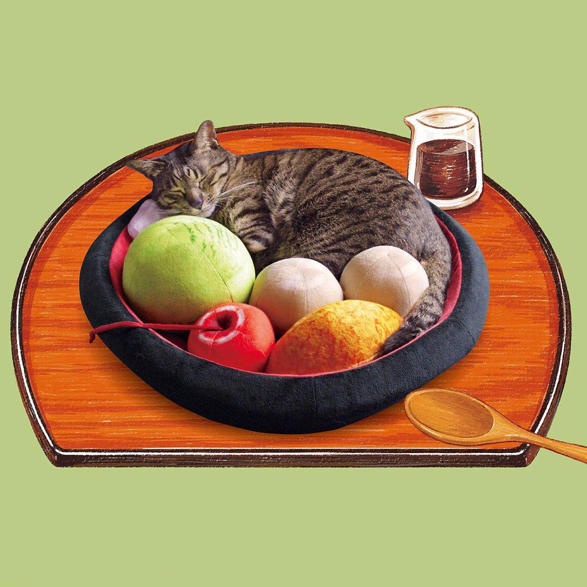 あんみつの具になってスヤァ( ˘ω˘ )💤  猫さんは入ってリラックス♪ 飼い主さんは見て癒される📷 あんみつにゃんこクッションが新登場