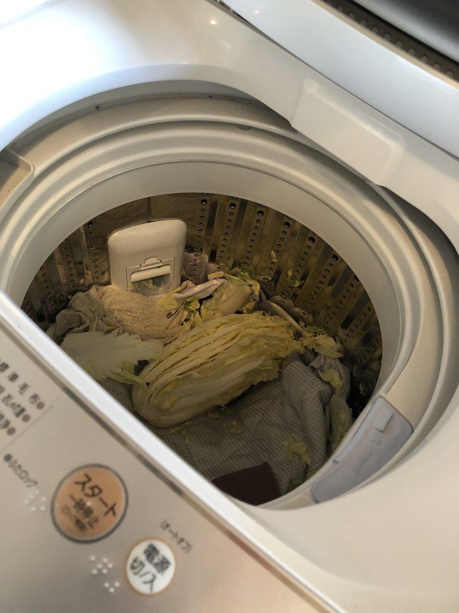 めっちゃ死にたい白菜洗濯してもた、、、