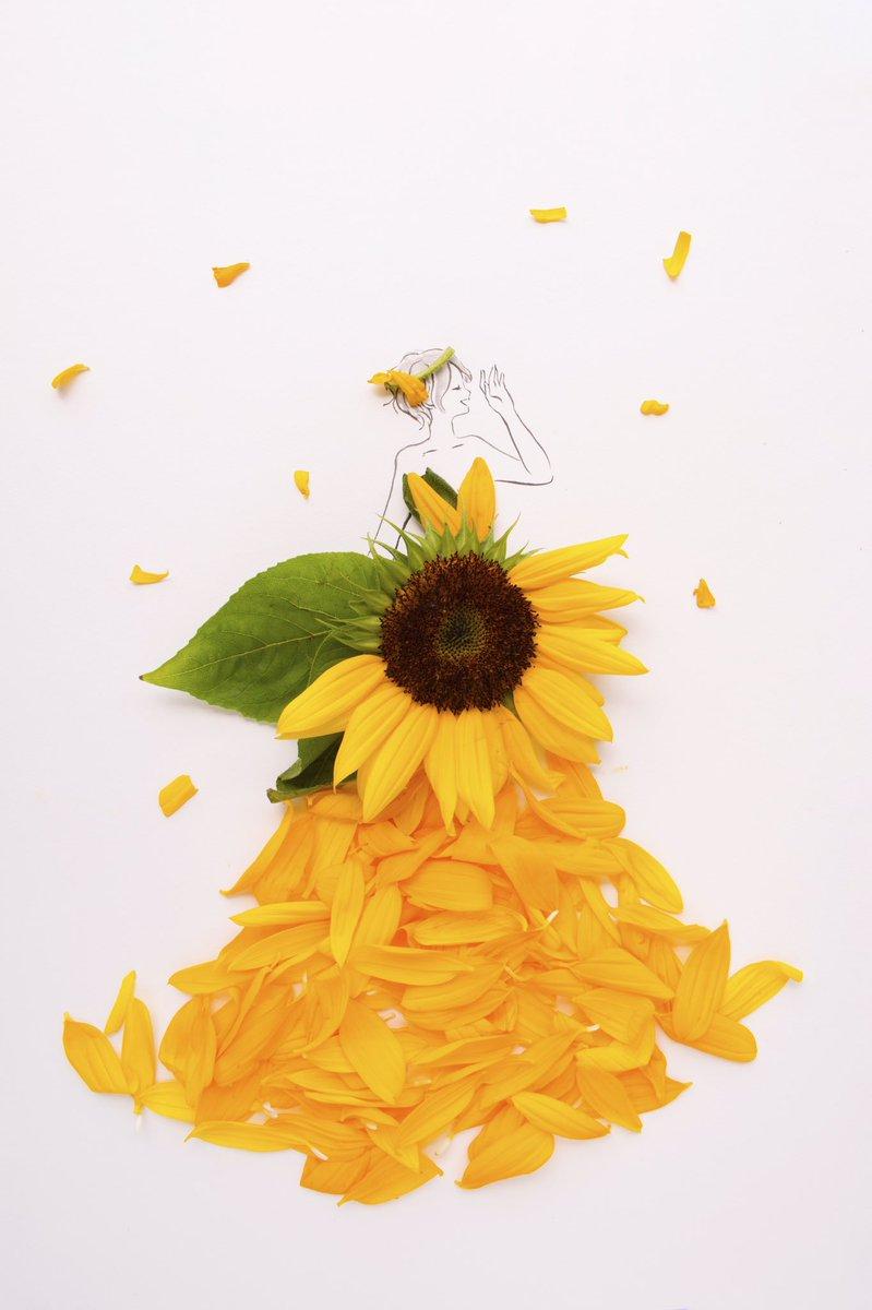 きょう8月31日は 野菜の日 宿題の日 空き家整理の日 ベジタブルデー I Love Youの日  誕生花はヒマワリ 花言葉 「あなたは素晴らしい」 「あなただけを見つめる」