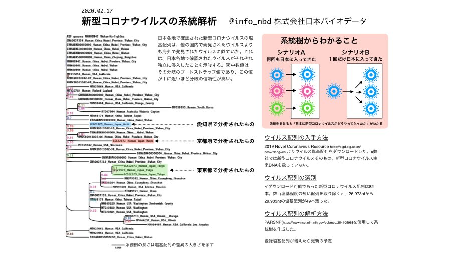 系統解析をすると、たぶん新型コロナウイルスは日本に何回も来てる