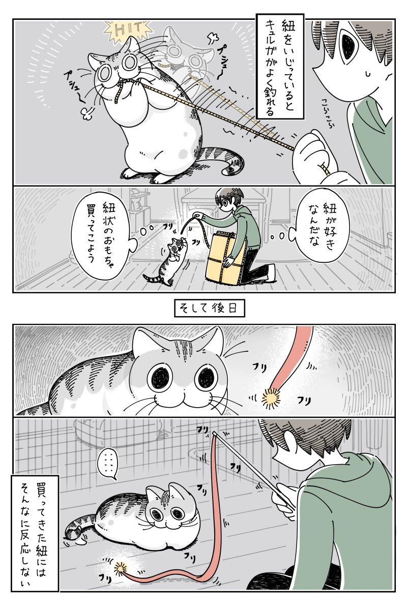 紐にじゃれるネコ