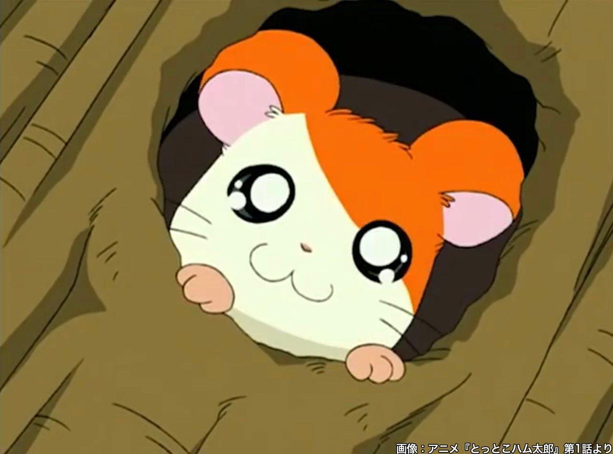【祝なのだ】本日7月7日でアニメ『とっとこハム太郎』放送20周年  2000年7月7日より放送