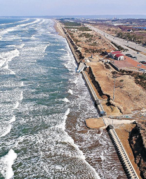 国内で唯一、車で走行できる砂浜である羽咋市と宝達志水町の「千里浜なぎさドライブウェイ」の一部が数百㍍にわたり、波による浸食で21日までに消えた