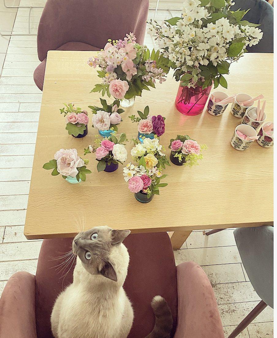 毎日お庭で飾る花を摘んで、木の実を採って、お店の準備