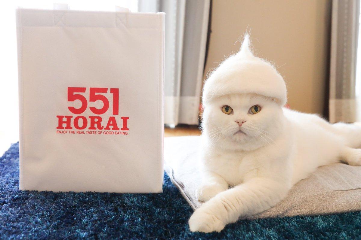 私が通ってる整体のお兄さん、硬派な感じやのに飼ってる猫の話になると溺愛話が止まらないのだけど「最近猫の抜け毛集めてて…」と話し始めて(か、変わってる…)と思ったら猫の抜け毛を再構築して猫帽子なるものを作る文化があるらしい