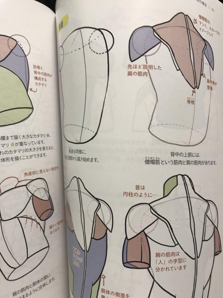 「ソッカの美術解剖学」と合わせて読みたい