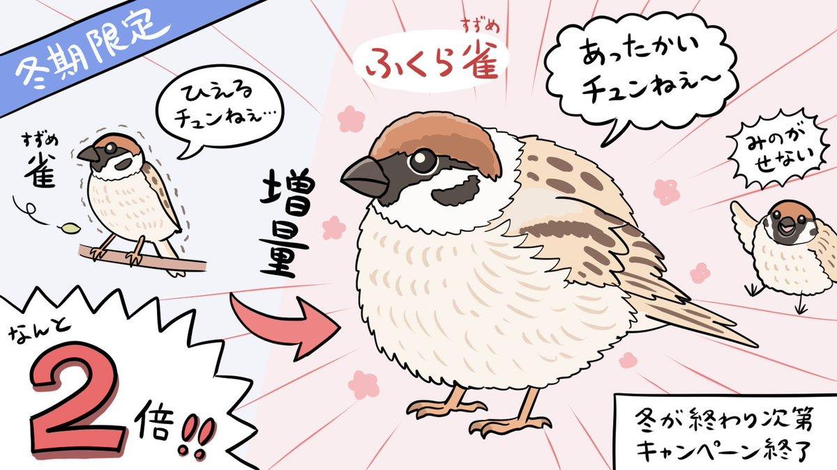 ふくら雀の季節。