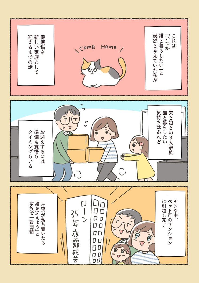 保護猫ちゃんを家に迎えるまでの話①  (長くなるので続き描けたら順番にこのツイにツリー方式で追加してきます)