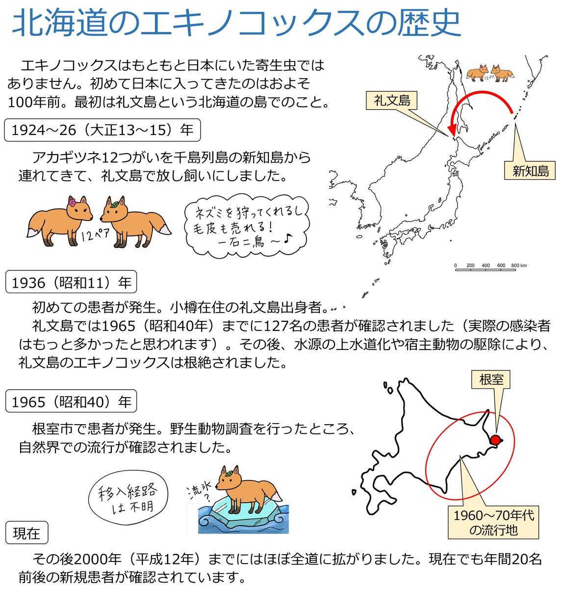 もともと北海道にはエキノコックスは存在しませんでした