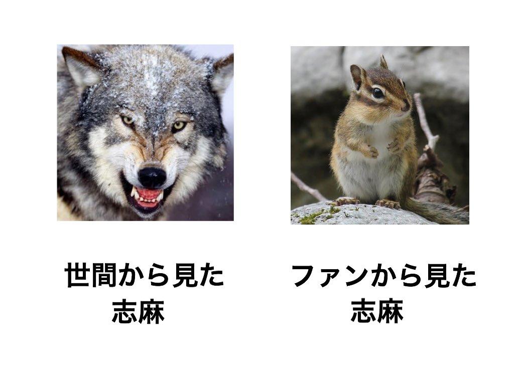 世間から見た○○とファンから見た○○シリーズ  Ver.浦島坂田船