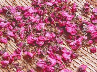 桜の塩漬けって染井吉野で作るのかと思ったら八重桜らしい