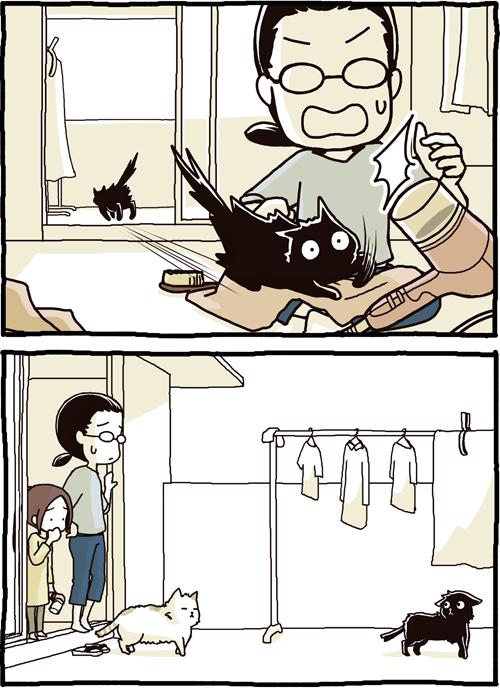 職場の洗濯日和。