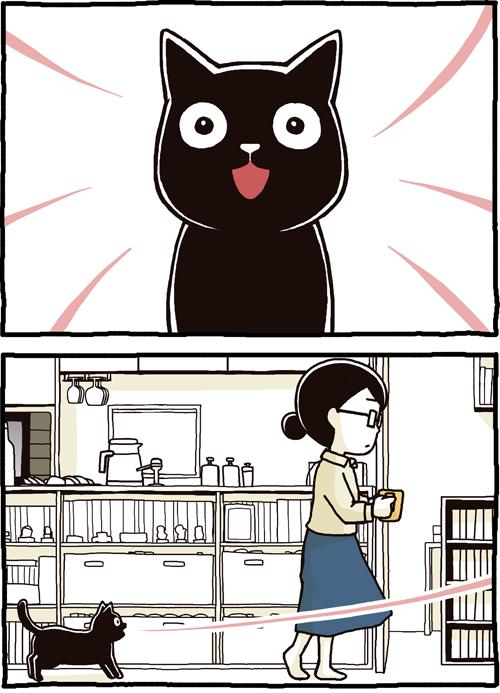 「猫の声が長い、でも特に言いたいことなさそう」