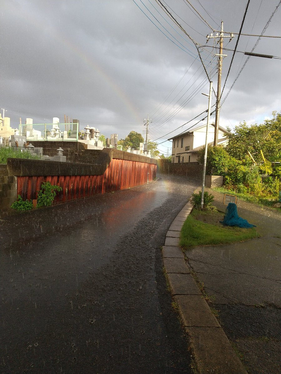 雨すごすぎ、虹の着地点なんて初めて見たわ
