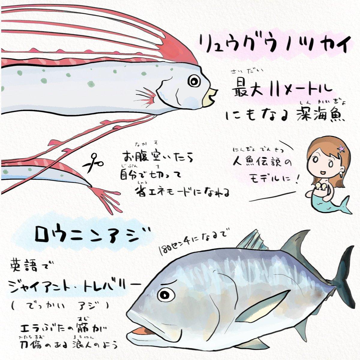 任天堂の人気ゲームから魚に興味を持ってもらえたら🐟