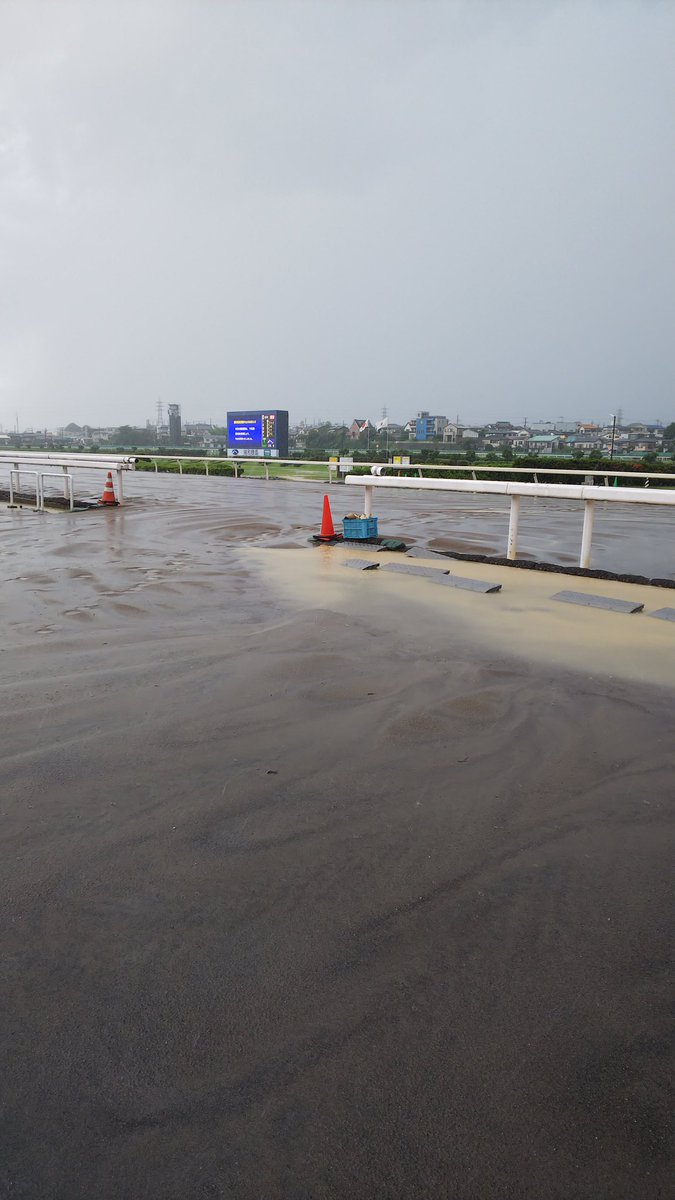 け結局7レース以降の全てのレースが中止となってしまいました😭😭😭  雨は弱くなっても、馬場状態の悪化と検体採取所の水没による中止ですかね……😭  こんなの初めてですわ……