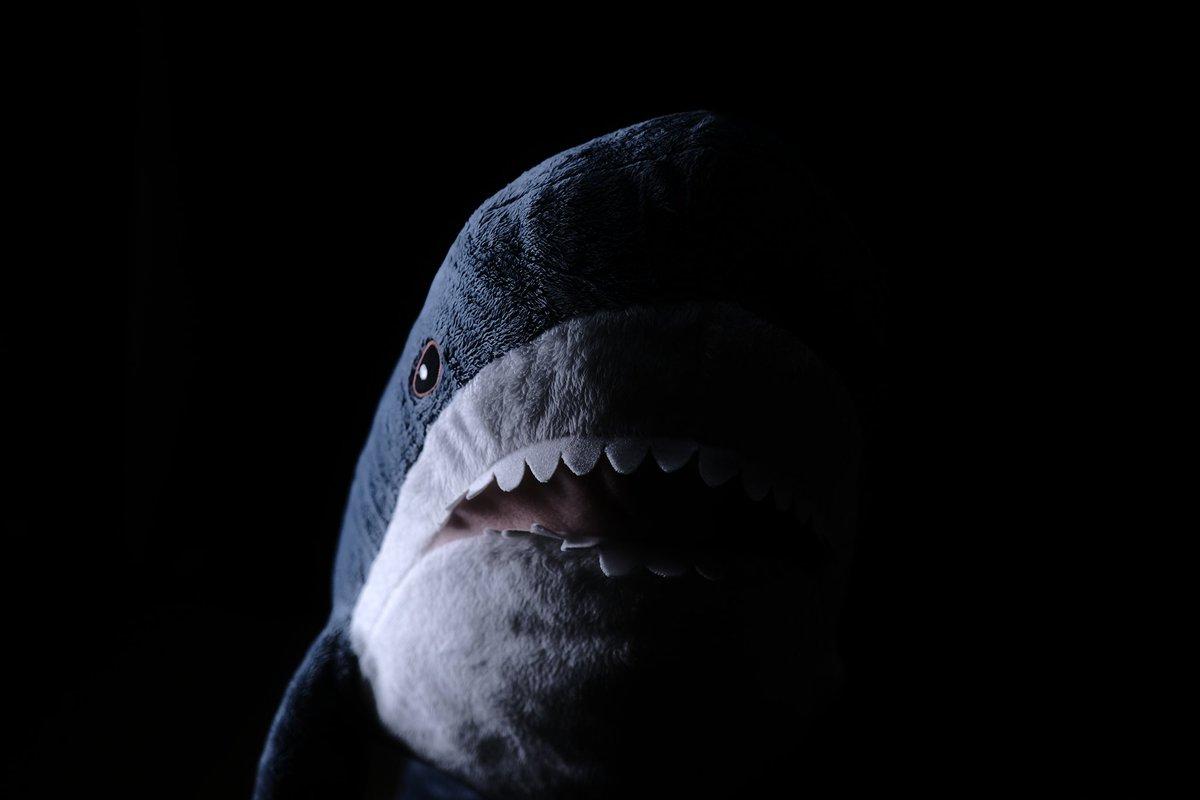 外出自粛でやることがないので、IKEAのサメを怖そうに撮ってたら一日が終わった