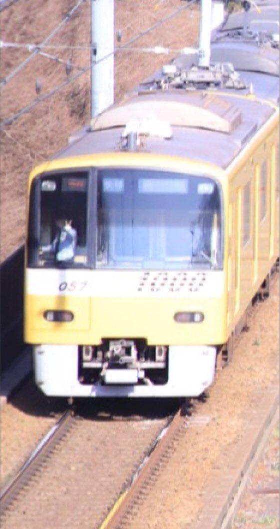桜と電車いいじゃん! カメラカシャー ん!?