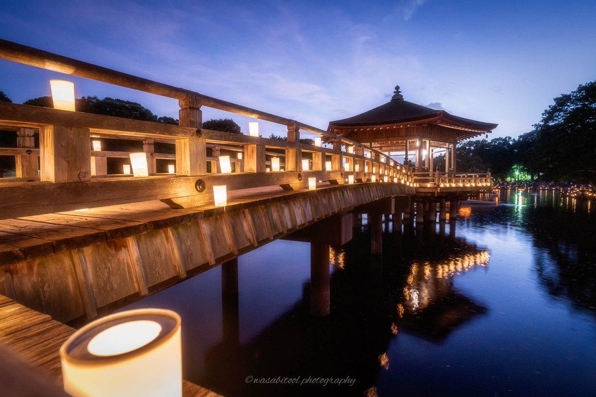 昨年の今頃は奈良燈花会でした 奈良公園の浮御堂が美しいのです  #おうちで燈花会