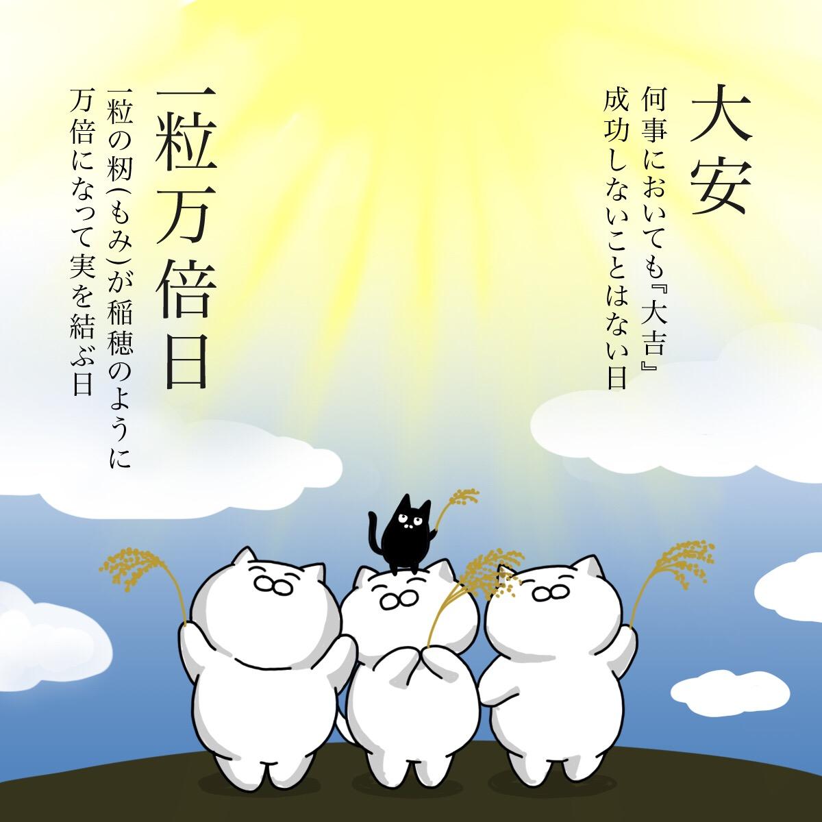 本日 8月13日は『大安』と『一粒万倍日』の2つが重なる縁起の良い日