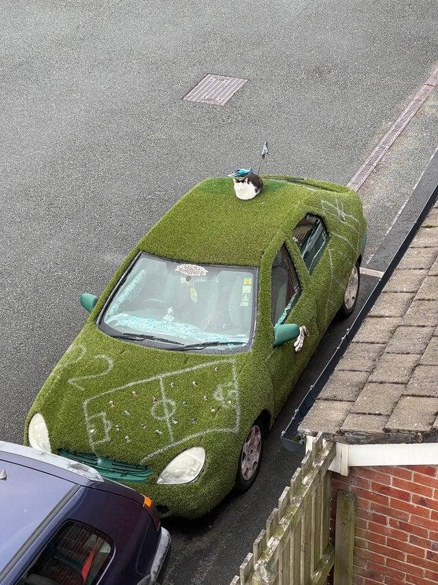 「このネコは毎朝7時にこのヘンテコな車に座って私を見つめます