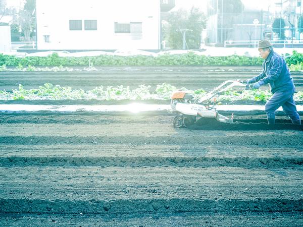 農業からはじまったDNAを受け継ぎ、人も会社も成長していく