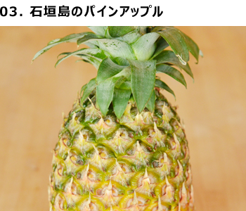 03-pineapple.png?mtime=20180403164819#asset:1176365