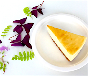 fabcafe singapore_menu_Yolkless Cheese Cake Deseert_artscience museum