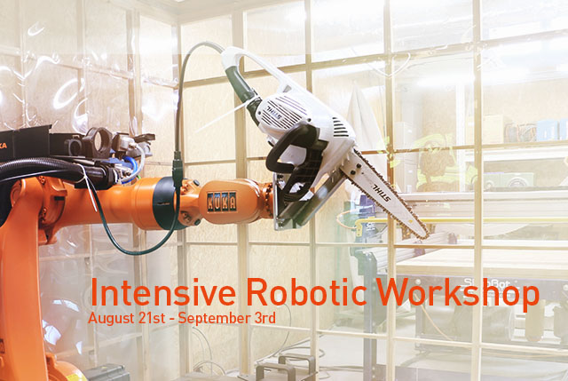 Intensive Robotic Workshop
