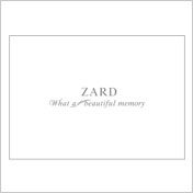 "ZARD | ""What a beautiful memory 2007"" パンフレット"