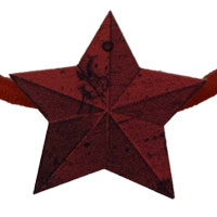 AKIHIDE | 星の還る場所 ヘアチャーム
