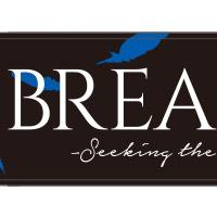 BREAKERZ   -Seeking the Blue Bird-マフラータオル