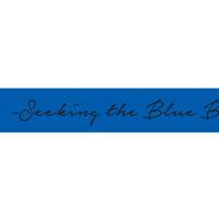 BREAKERZ   -Seeking the Blue Bird-チャリティーバンド