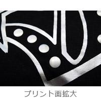 DAIGO☆STARDUST | LIVE 2013 スペイシーTシャツ