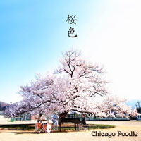 Chicago Poodle | 桜色【初回限定盤】