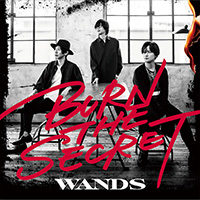 WANDS | BURN THE SECRET【通常盤】