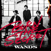 WANDS | BURN THE SECRET【通常盤】