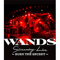WANDS | WANDS Streaming Live 〜BURN THE SECRET〜