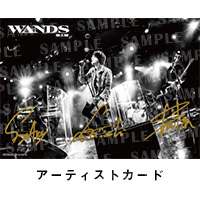WANDS   WANDS Streaming Live 〜BURN THE SECRET〜